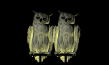 Oracles, Owls… Some Animals Never Sleep, 2012-2014